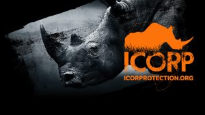 ICORP-facebook-banner-300x169